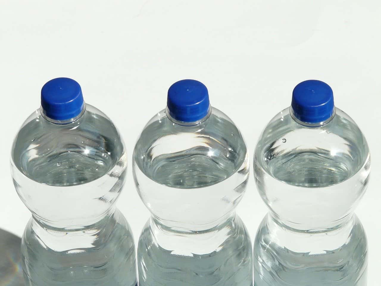 bottled water or filter jug