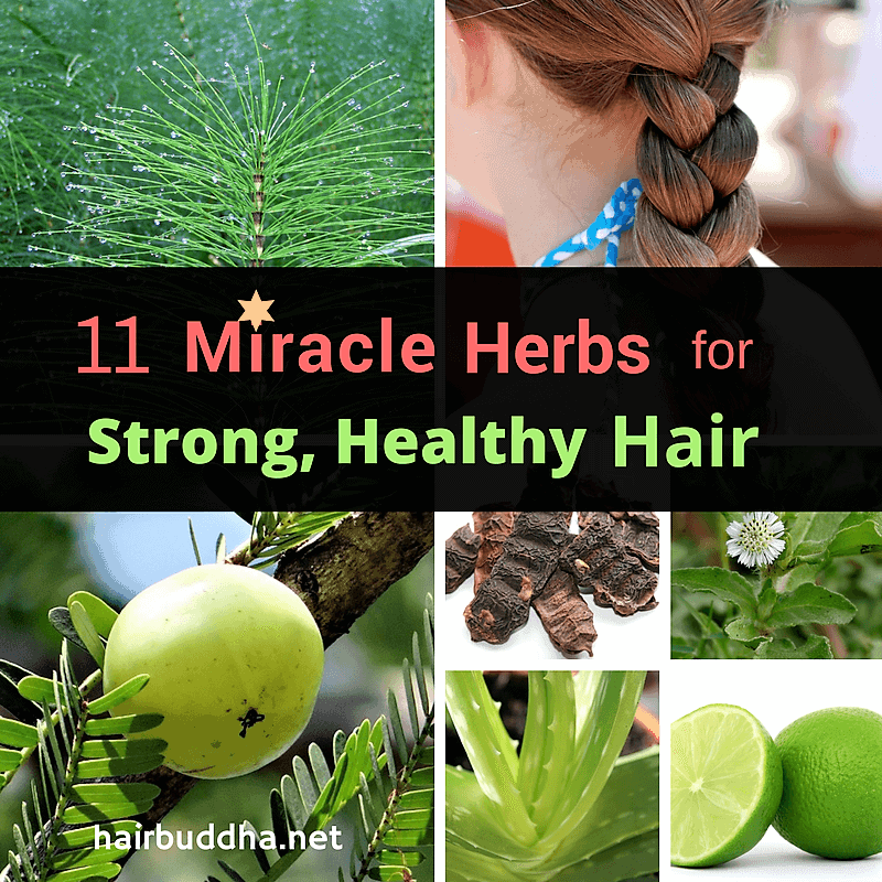 11 Miracle herbs for strong healthy hair