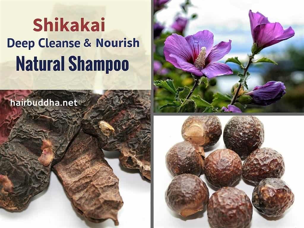 Shikakai Deep Cleanse Natural Shampoo