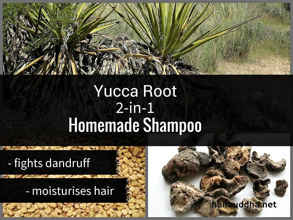 yucca root homemade shampoo